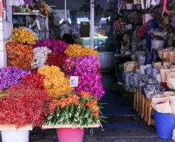 フラワー教室の花材は自分で用意するのかお店で用意してくれるのか