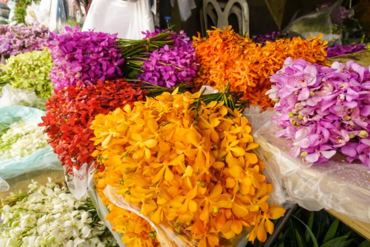 タイ最大の花市場・パークローン市場の楽しみ方!